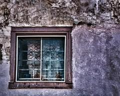 old window (-liyen-) Tags: activeassignmentweekly entropy window curtain fujixt2 bestofweek1 bestofwee2