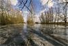 Middelvliet 3 (Rens Timmermans) Tags: canon5dmk3 sigma1224f4556dg hoekschewaard landschap water ijs nationalgeographic ngc