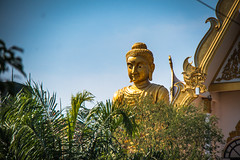 Dragon Temple (sheiladeeisme) Tags: dragontemple watsampran bangkok thailand travel tourist tourism religion buddhist buddha buddhism shevo seasia