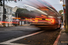 all the leaves are brown (pbo31) Tags: bayarea california nikon february 2018 color winter boury pbo31 city urban sanfrancisco lightstream motion traffic roadway muni bus vannessavenue motionblur stop russianhill marinadistrict brown transit infinity 810