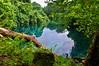The Blue in Green (Tomas Pfeifer) Tags: water purity pure greenery vanuatu nature