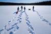 DSCF4347-Mikko-Ilmoniemi.jpg (jkl_metsankavijat) Tags: 35mm jyme jyväskylänmetsänkävijät partio xt1 eräkämppä kylmä lumi lämpö nuotio pakkanen partiohuivi partioscout pimeys scout scouting seikkailijat talvi talvivaellus trangia tuli vaellus vaeltaminen ystävät