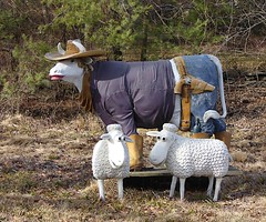 Did You invite him ? (flickr flame) Tags: sculpture animals steer sheep western hat holster lipstick oddity
