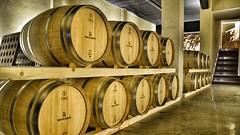 Tenute Olbios (Sardinia SlowExperience) Tags: sardinia wine tenuteolbios sardynia winetasting tour