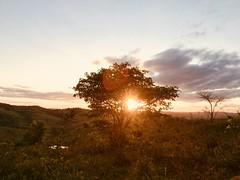 1710171831 (Elder Trassi) Tags: nature natureza entardecer sunset sol landscape paisagem tree árvore
