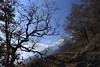 nature d'hiver (bulbocode909) Tags: valais suisse montagnes nature forêts arbres hiver nuages bleu paysages vert rouge
