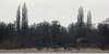 Dordtse Biesbosch - Slikken aan de Tongplaat (merijnloeve) Tags: dordtse biesbosch slikken aan de tongplaat urban urbex old house nederland hdr