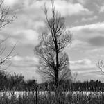 Seneca Lake thumbnail