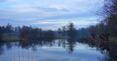 spring morning (Wöwwesch) Tags: lake trees color sky blue reflection spring