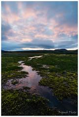 Wilderness, Iceland (Bigmob Dontwannastop) Tags: wasteland wilderness grass water mirror reflection sunset dusk sky iceland