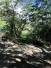 On the trail to the top of Diamond Hill - Waikiki 2017 (litlesam1) Tags: hawaii oahu neverendingbirthay2017 november2017 waikiki diamondhead