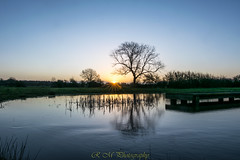 Sunrise 08/03/18 (R M Photography) Tags: sunrise sun nikon sigma sigma1835f18 sigma1835mmf18 d3300 inspiredbylove reflection tree water