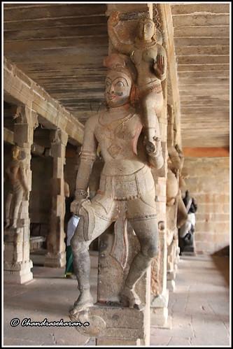 7674 - Thirumayam Temple scuptures