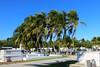 Key West (Florida) Trip 2017 7475Ri 4x6 (edgarandron - Busy!) Tags: florida keys floridakeys keywest cemetery cemeteries keywestcemetery