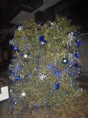 060 (en-ri) Tags: albero natalizio christams tree verde argento blu addobbi sony sonysti