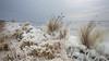 Winter 2018 (Alex Verweij) Tags: winter 2018 almere alexverweij canon 5d 17mm dijk ijs ice sneeuw gooimeer