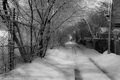 Se una notte d'inverno un viaggiatore (Sylvain Bédard) Tags: hiver noiretblanc nuit paysage urbain