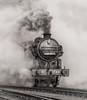 GNR N2 Tank No.1744 (BR 69523) (photofitzp) Tags: 1744 69523 gcr gnr lner loughborough n2 nigelgresley railways smoke steam black white