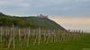 Castle Děvičky (Szymon Simon Karkowski) Tags: outdoor castle hill vines vineyeards sky clouds grass hrádek děvičky landscape moravia czech republic nikon d5100