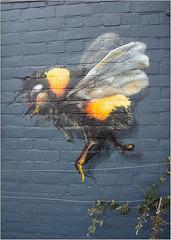Flight (Mabacam) Tags: 2018 london kingston kingstonuponthames thames riverside streetart wallart urbanart publicart spraycanart aerosolart painting paint mural freehand graffiti urbanwall wall bee weareskyhigh