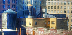 Upper West Side (albyn.davis) Tags: nyc newyorkcity geometry light sunlight windows buildings architecture city urban usa colors gold yellow brown bright shadows