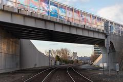 Train tracks (mfeingol) Tags: trainline sun tracks elliotbay olympicsculpturegarden winter seattle sunset