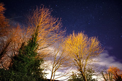 starry night (Paul Wrights Reserved) Tags: astrophotography astro trees clouds cloud sky skyscape night nightphotography nighttime longexposure
