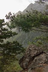 Национальный парк «Самария» (Hadron Collider) Tags: crete'ssamariagorge крит ущелье греция greece may 2017 сфакия crete φαράγγιτησσαμαριάσ национальныйпарк«самария» лефкаори rocks mountains m42 зенитарм canon kreta