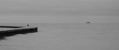 C N T M P L T N (Panda1339) Tags: thegreat50mmproject il minimalism monochrome cinematic chicago boat man blackandwhite 50mm usa lakemichigan