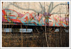 Revok (All Seeing) Tags: msk awr cryx cryotrans reefer foliage weeds brush perspective foreground nature steel railroad boxcar container penis vagina thot asian teen graff graffiti boobs architecture line linear design master artist paint aerosol allseeing rebels