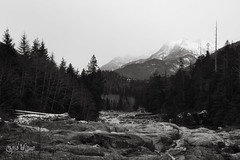 Clayoquot Plateau (wilbias) Tags: clayoquot plateau provincial park bc british columbia canada black white monochromatic mountains morning cloudy winter vancouver island