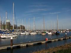 The marina at Shotley Gate (JonCombe) Tags: coastwalk193 suffolk stourandorwellwalk coast coastwalk orwell
