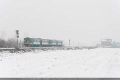 Automotrici nella neve... (EuroStar483) Tags: treni ferrovie snow neve copiosa intensa aln663 automotrici diesel aln6631015 6631015 aln doppia doppietta vigliano biellese linea biellanovara segnale pl campo innevato treno transito nevicata