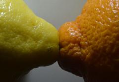 The Kiss (nrg_crisis) Tags: macromondays citrus lemon orange fruit macro
