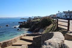 IMG_7592 (mudsharkalex) Tags: california pacificgrove pacificgroveca