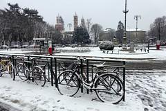Alba bianca a Vercelli (STE) Tags: vercelli neve snow inverno winter freddo cold snowy white sony rx100m4 fence ringhiera bici bicicletta biciclette bike bicycle