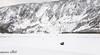 Vastness (maureen.elliott) Tags: landscape mountains winter bison animals wildlife yellowstonenationalpark wyoming vast snow white almostmonochrome minimallandscape