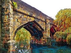 The North Bridge (Steve Taylor (Photography)) Tags: art architecture digital colourful bridge column uk gb england greatbritain unitedkingdom london tree texture eltham elthampalace moat northbridge