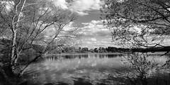 Istra Reservoir (stepanov9) Tags: type17svema minoltadimagescanelite5400 nikonf80 landscape water istra истра monochrom blackwhitefoto russia analogphoto rivers lakes