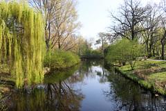 Berlín_0343 (Joanbrebo) Tags: berlin alemania de tiergarten park parque parc canoneos80d eosd efs1855mmf3556isstm autofocus