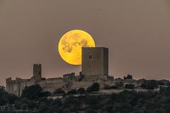 Ou ferrat al castell d'Ulldecona (E.Domènech) Tags: moon lluna luna castell catillo castle ulldecona photopills a7rii sel20tc sel100400gm manfrotto meike