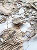 the end of an era of tranquility (Ines Seidel) Tags: news paper newspaper alignment content form ft financialtimes tranquility texture pattern nachricht zeitung papier inhalt muster textur