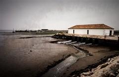 17022018-M0170010_Online (Miguel Tavares Cardoso) Tags: cardoso ciclope miguel montijo tavares viagens 2018 moinho maré portugal tejo tajo tagus rio river