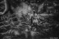 Sandrine (62)1 (Bruno Pélican) Tags: dark darkness sombre peur strange forêt forest lugubre triste étrange