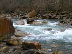 #Lovecreekbeds (csm242000 Photography) Tags: csm242000 photography creek crisp crashing clear cleanly mountain stream streaming