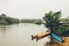 ...along Suriname River (Nataša Bandović) Tags: river surinameriver suriname roadtrip adventure nature rainforest rainyday rain mist life natasabandovicphotogrphy photography canondslr canonphotography ef50mmf12lusm wildreness