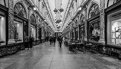 Galerie de la Reine BXL (✵ΨᗩSᗰIᘉᗴ HᗴᘉS✵66 000 000 THXS) Tags: 7dwf monochrome blackandwhite galerie galeriedelareine bruxelles brussels hensyasmine namur belgium wallonie europa aaa بلجيكا belgique namuroise proxi belga info look photo friends bélgica ベルギー белгия բելգիա belgio 벨기에 belgia бельгия 比利时 bel be ngc saariysqualitypictures wow yasminehensinterst intersting interestingness eu fr greatphotographers lanamuroise