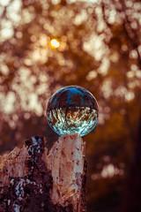 The Beauty of The Bokeh (ibtihajtafheem) Tags: lensball bokeh crystalball lensballphotography crystalballphotography bokehlife bokehbliss color photography nature focus