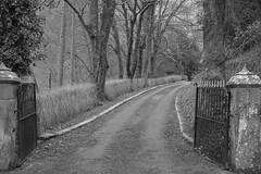 Gateway (Tony Tooth) Tags: nikon d7100 sigma 1750mm bw blackandwhite monochrome gate gateway drive driveway ecton staffs staffordshire