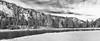 Unpredictable (maureen.elliott) Tags: landscape landforms yellowstonenationalpark blackandwhitephoto blackandwhite nature mountains trees river winter stormclouds skies wyoming